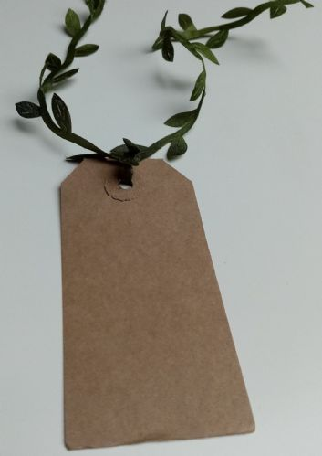 Botanical Tags 10pk